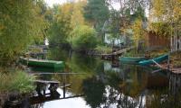 Плутовка осень... Художник словно спел ей оду, запечатлев её наряд.   Фото В. Бербенца