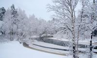 «Много зима заготовила пряжи, Белые вещи без устали вяжет» (Е. Явецкая). Фото В. Бербенца
